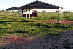 Exercise area shelter - Rocky Mountain Kennels in Longmont, Colorado
