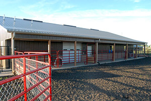 Exercise area - Rocky Mountain Kennels in Longmont, Colorado